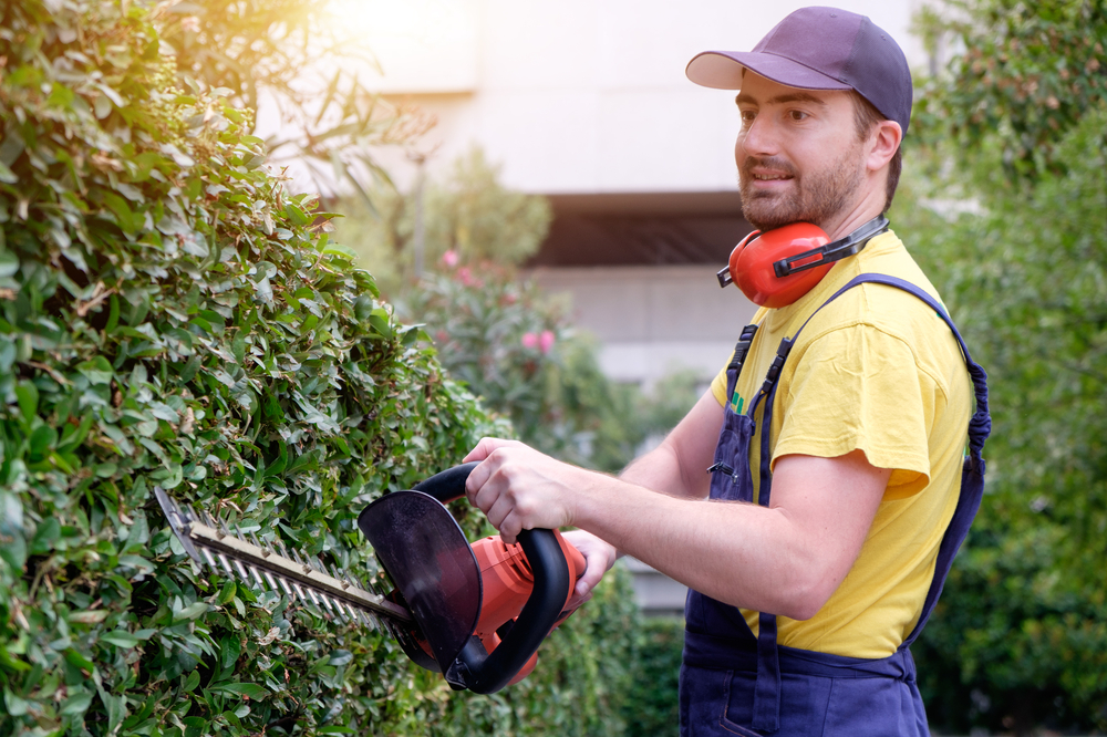 Your Career as a Landscaper
